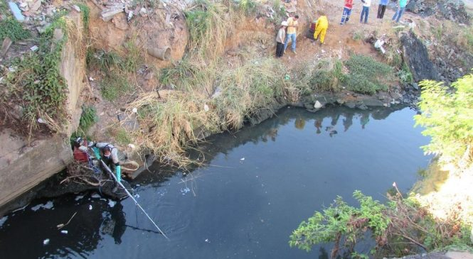 Peixes e cágados são retirados de córrego e lagoa em Montes Claros