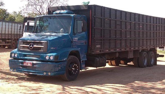 Criminosos fretam caminhões e roubam 35 cabeças de gado em fazenda; vítimas foram deixadas amarradas em um quarto